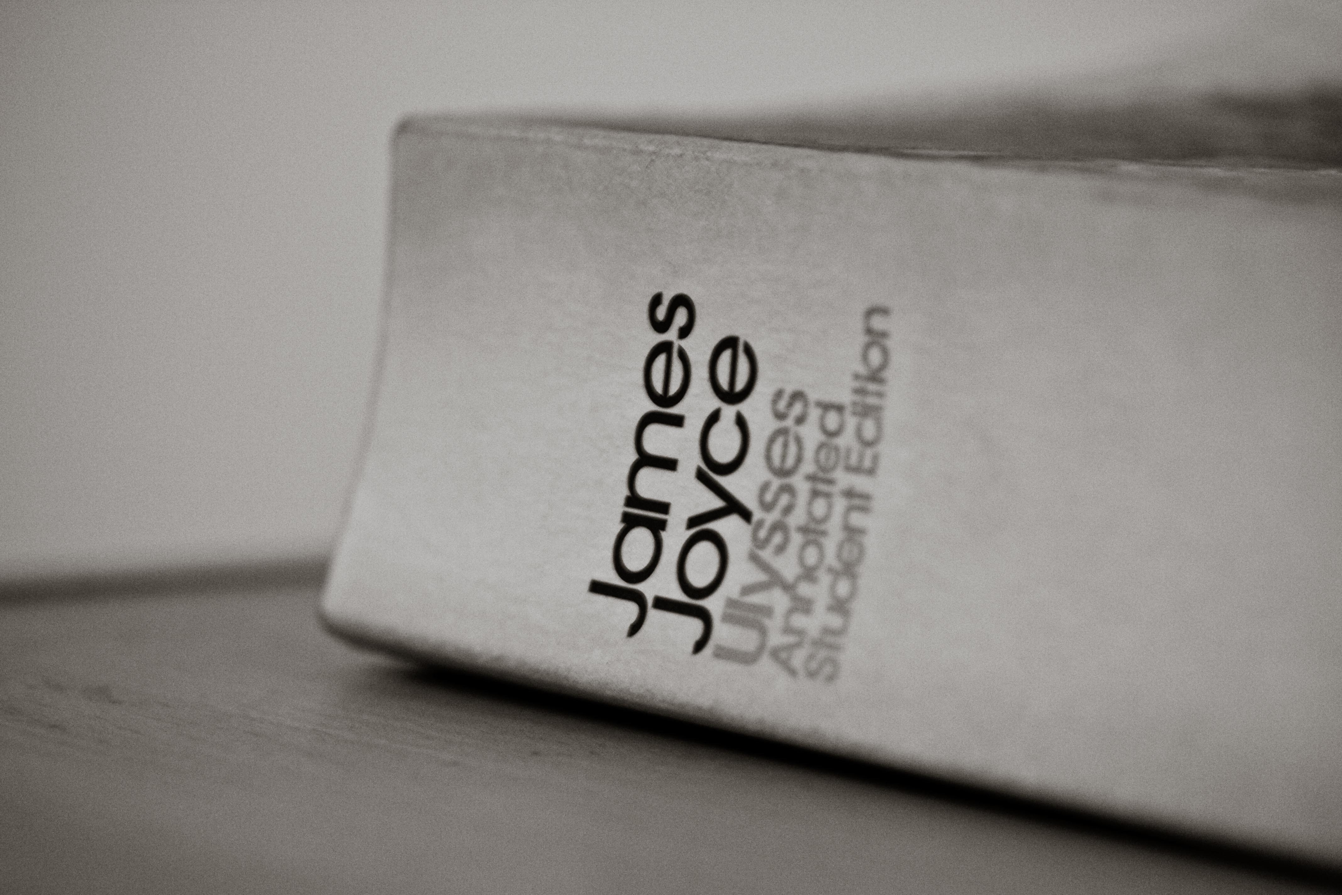 Ulysses-kirjan kansi - mitkä ovat maailman parhaita kirjoja?
